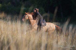 Pferd mit Reiterin im hohen Gras