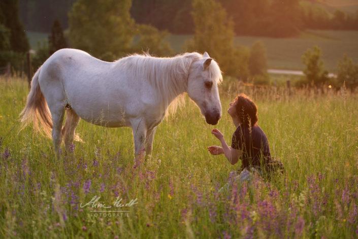 Frau kommuniziert mit altem Pony im Abendlicht